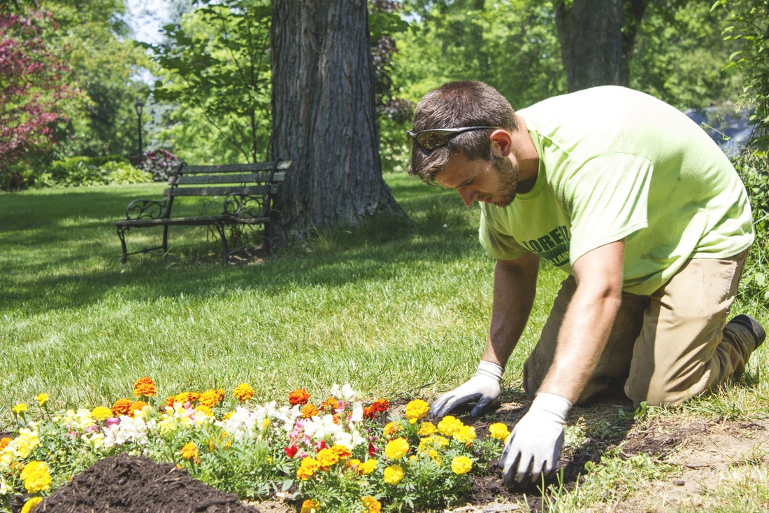 Meet Your Personal Gardener!